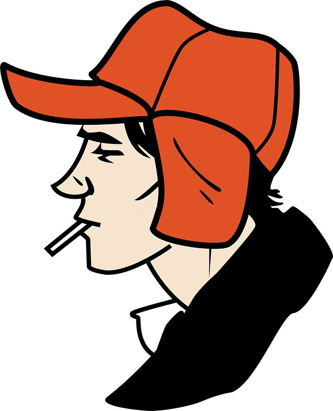 an analysis of the catcher in the rye by holden Holden caulfield is the main character and the narrator of the jd salinger novel  'the catcher in the rye' in this lesson, we will learn more.