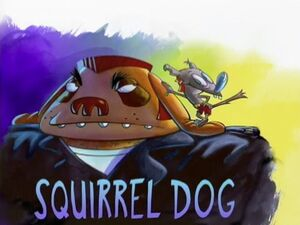 SquirrelDog