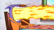 Cat Breathing Fire