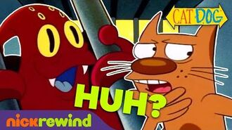 "Top 9 ""What the Heck?"" CatDog Moments! NickRewind"