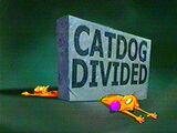 CatDog Divided