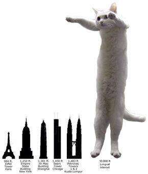 Longcat4-1-