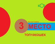 Топ-10 кошек. Дизайн 2004-2008