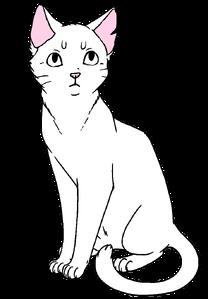 Манекен короткошёрстного кота