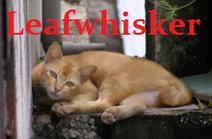 Leafwhisker
