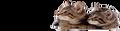 Cats logo2.png