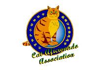 CAA international logo for distribution