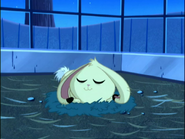 Sachiko Sleeping