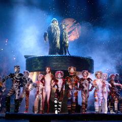 US Tour 2006