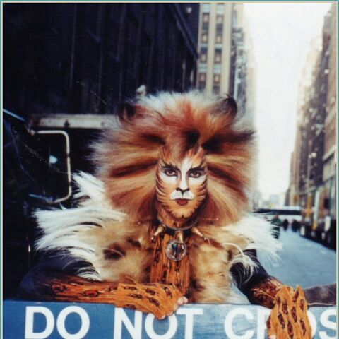David Hibbard as Rum Tum Tugger on Broadway from his <a rel=