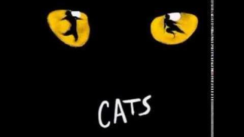 Memory - Cats musical - Czech cast