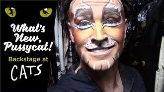 Episode 13 - What's New, Pussycat? Backstage at CATS with Tyler Hanes
