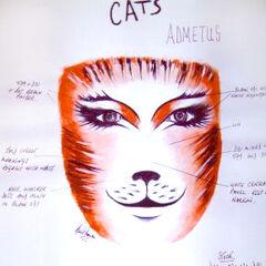 Cats Musical Makeup Designs 38319