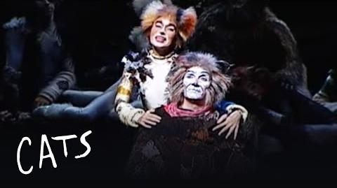 Gus The Theatre Cat (Fernando Patau) - Brazil - Cats the Musical