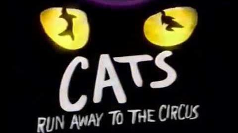 Documentary - Aus Circus Tour 1999