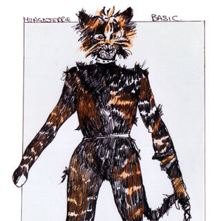 Original design for Basic Mungojerrie
