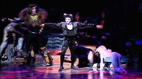 Mr Mistoffelees - Brazilian 2010 production