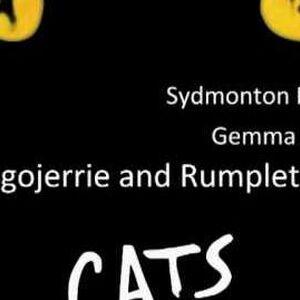 Mungojerrie And Rumpleteazer Cats Musical Wiki Fandom