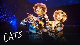 Mungojerrie and Rumpelteazer Cats the Musical