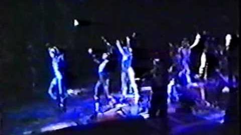 Jellicle Songs, Naming, Invitation - Vienna 1987
