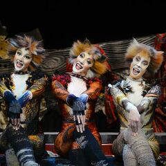 London Palladium 2014 / 2015   'Cats' Musical Wiki   FANDOM powered