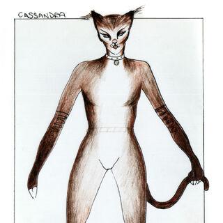 John Napier's Cassandra design