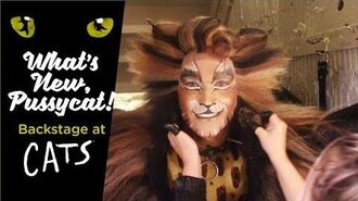 Episode 11 - What's New, Pussycat? Backstage at CATS with Tyler Hanes