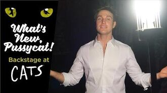 Episode 15 - What's New, Pussycat? Backstage at CATS with Tyler Hanes