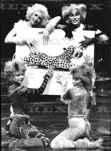 Kittens 1987 April Duchess of Windsor Jewellery