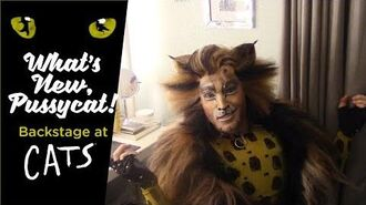 Episode 10 - What's New, Pussycat? Backstage at CATS with Tyler Hanes