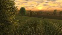 Cattle and crops portfolio 02