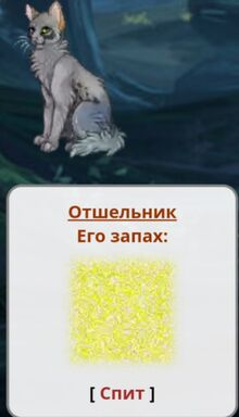 MbbOhRemkRk