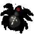 Ядовитый_паук