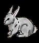 Первый кролик