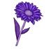 Фиолетовый_цветок