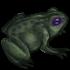 Царица-лягушечка