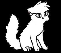 Модель кошки КШ