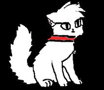 Модель кошки дом КШ