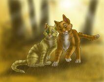 Коты - воители