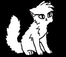 Модель кошки ДЛШ