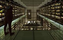 Library (Underground)
