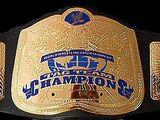 UWF Tag Team Championship