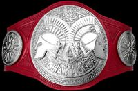 New-Raw-Tag-Team-Title-Debuts-on-Raw-Cesaro-Sheamus-given-new-Raw-Tag-Team-Titles