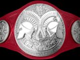 Raw Tag Team Championship (New-WWE)