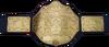 UWF Championship HCTP