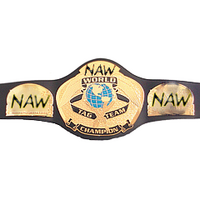 Wcw tag team edited-1