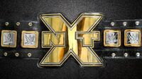 NXT Championship Belt