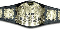 Wwe-belts-14 copy