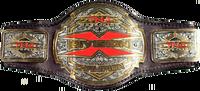 TNXA X-Division Championship