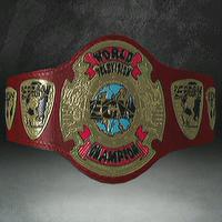 Wrestling Heaven Television Championship